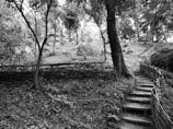 Parcul ecologic